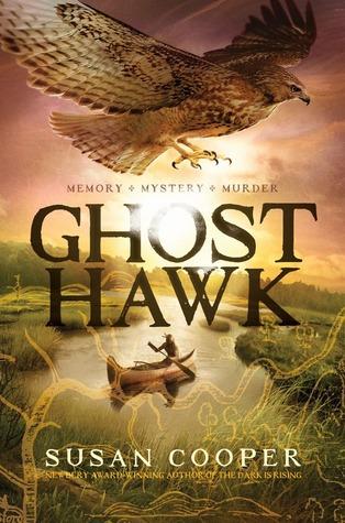 Cooper_ghost hawk