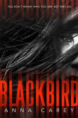 carey-blackbird
