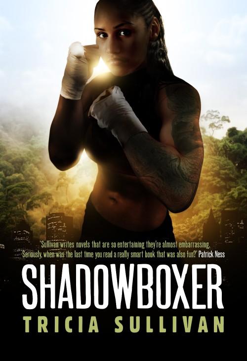 sullivan_Shadowboxer